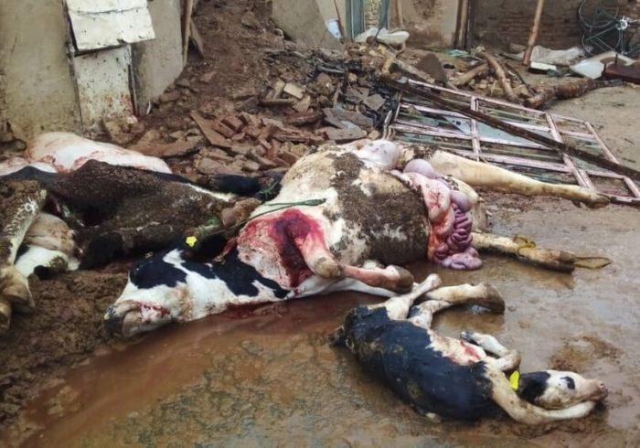 خسارت ۸۰۰ میلیونی باران به روستایی در اشترینان