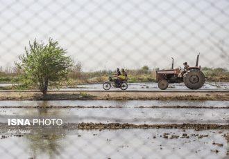 اختصاص ۸۵ هزار میلیارد تومان اعتبار به بخش روستایی کشور