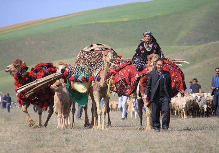 آغاز کوچ پاییزی عشایر استان تهران