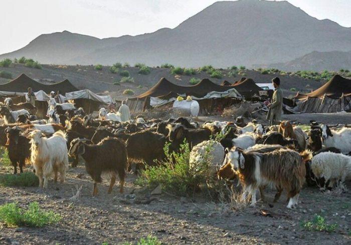 احیای طرح های عشایری در شهرستان رودبار