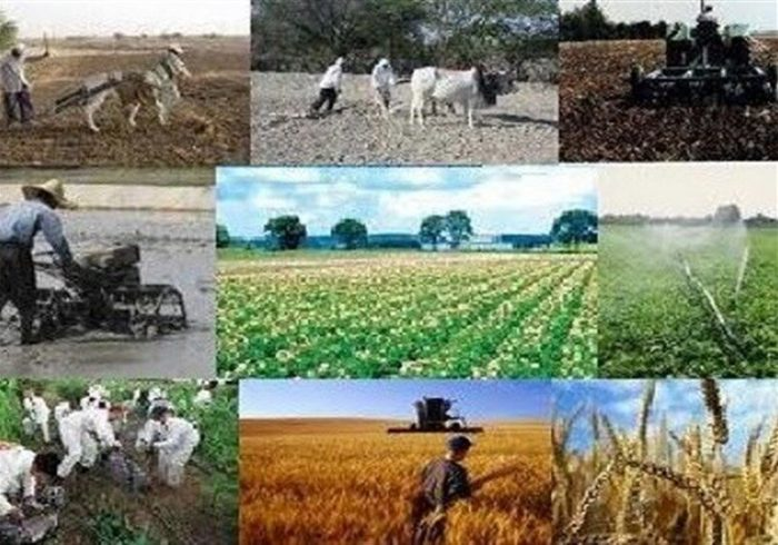بهره برداری از ۹ طرح عمرانی روستایی در نیاسر کاشان