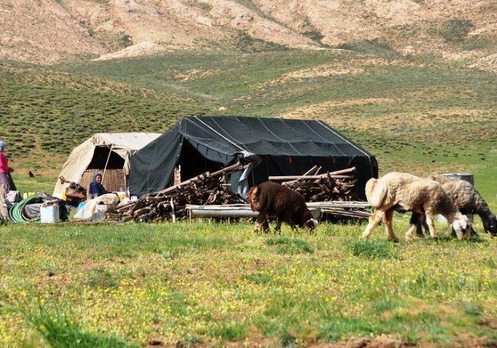 کرونا بین عشایر دزفول در حال گسترش است